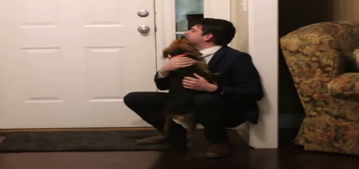 dog and missionary