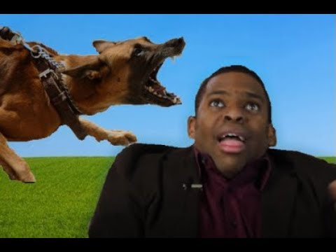 dogs attacking mormon missionaries